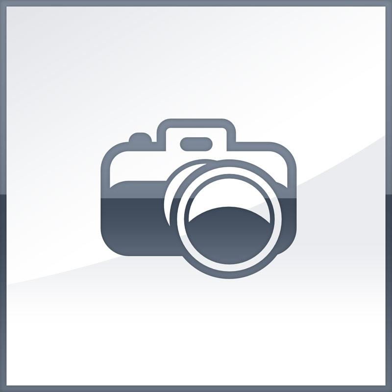 Apple iPad 9.7 (2017) WiFi 32GB silver EU MP2G2__/A