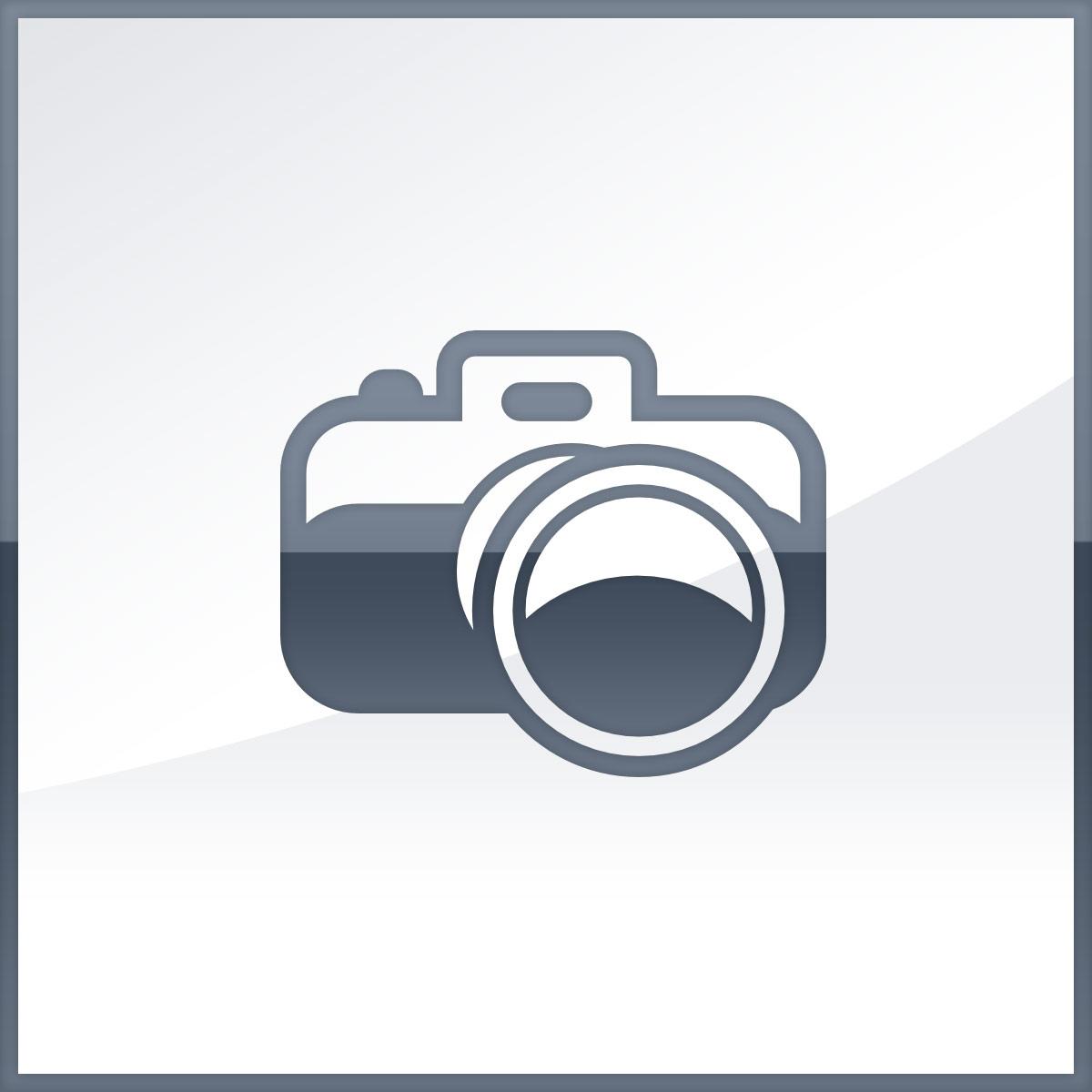 CAT - SMARTPHONES CAT PHONE B35 4G 4GB 512MB 2.4IN QVGA KAIOS       IN